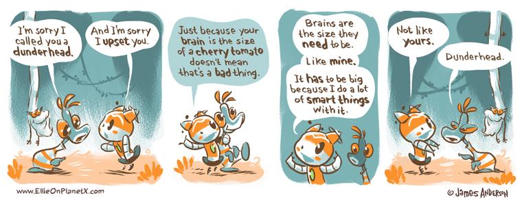 Brain Size Isn't Important